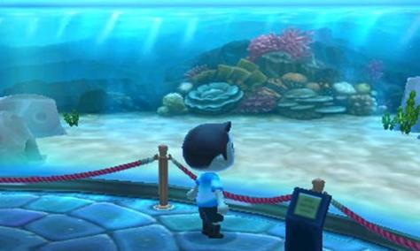 Empty Aquarium