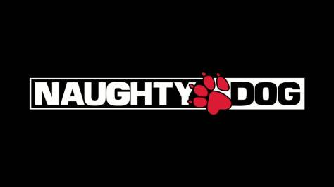 naughty-dog-mystery-game